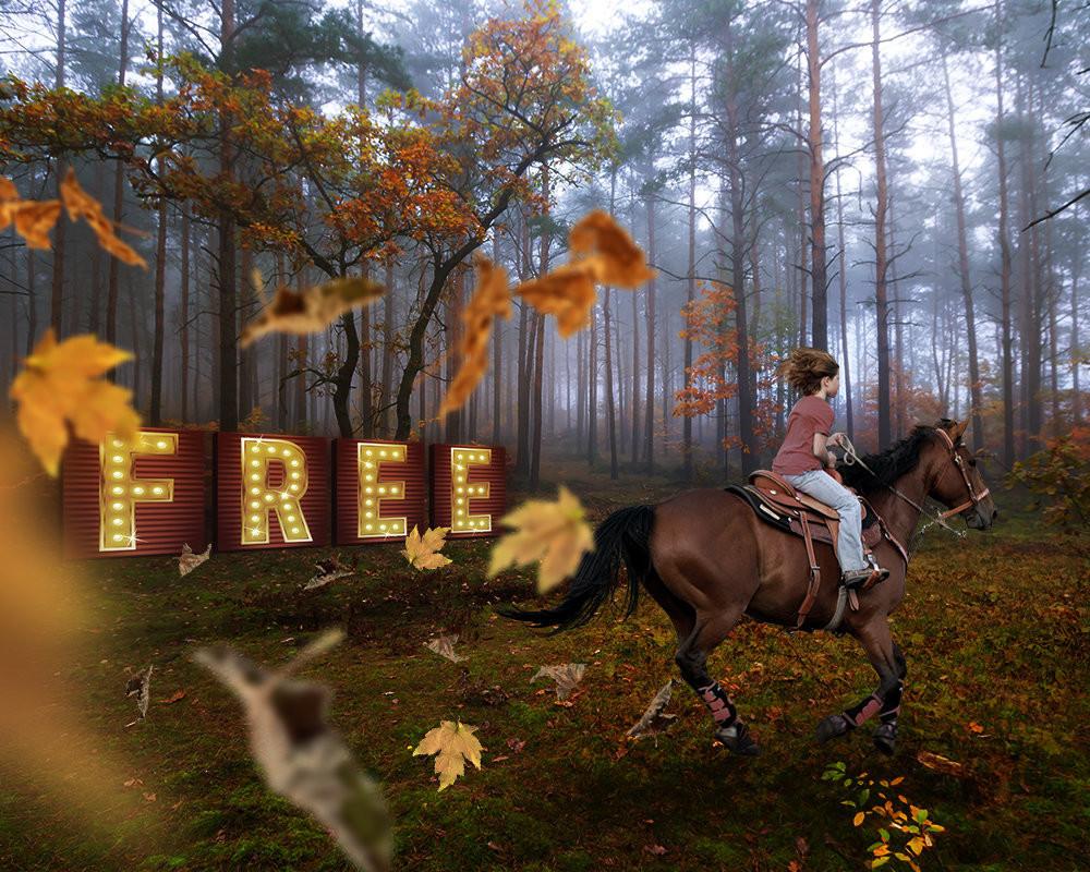 rsz-free-2-i1zkho