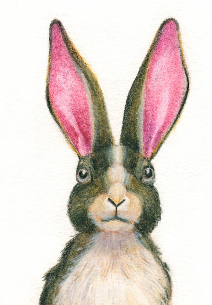 ostara-bunny-detail-head-tanpjn