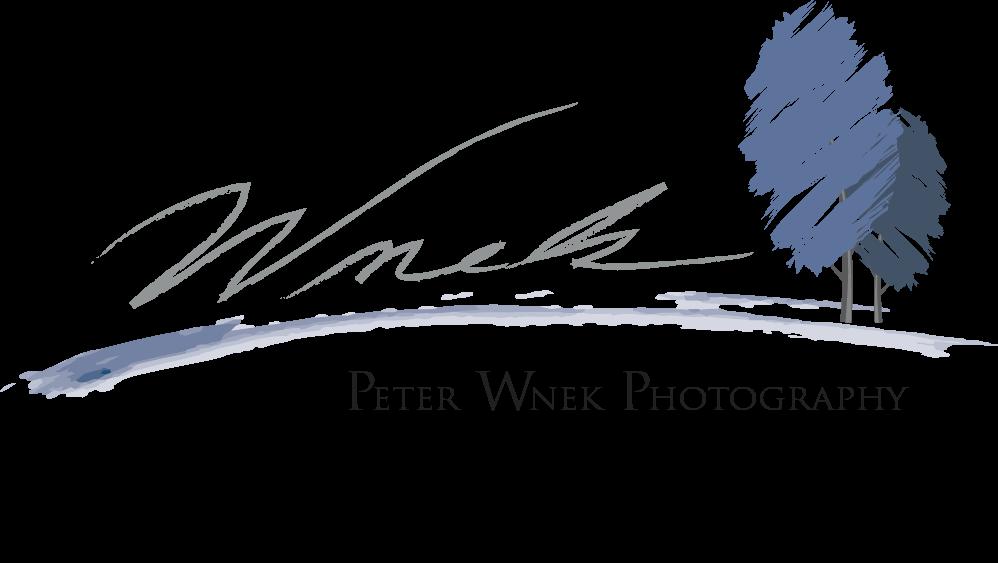 Peter Wnek