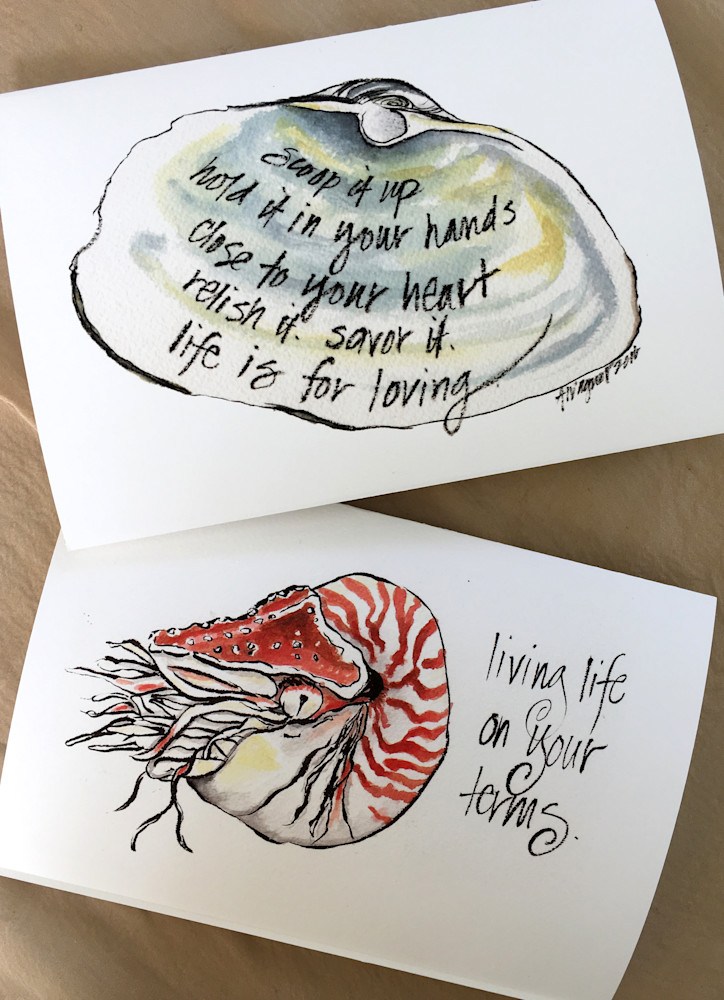 clam-shell-and-nautilus-greeting-card-photo-ahjhrr