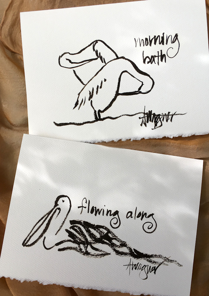 Pelicans-morning-bath-flowing-along-card-photos-wqdwjx