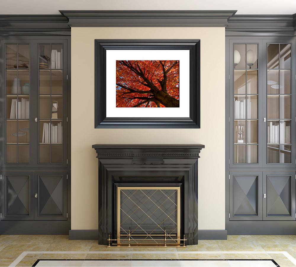 Shimmering-Orange-nature-photograph-wall-art-example-etrwrk