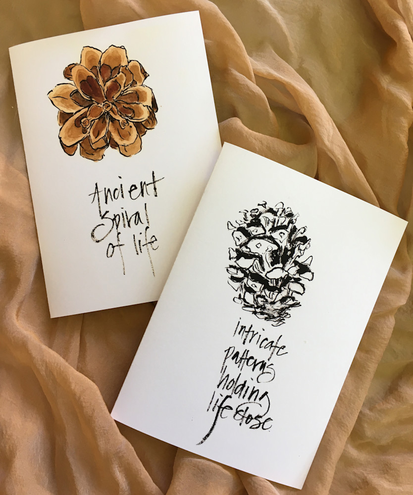 Pinecones-annette-cards-t0ixko