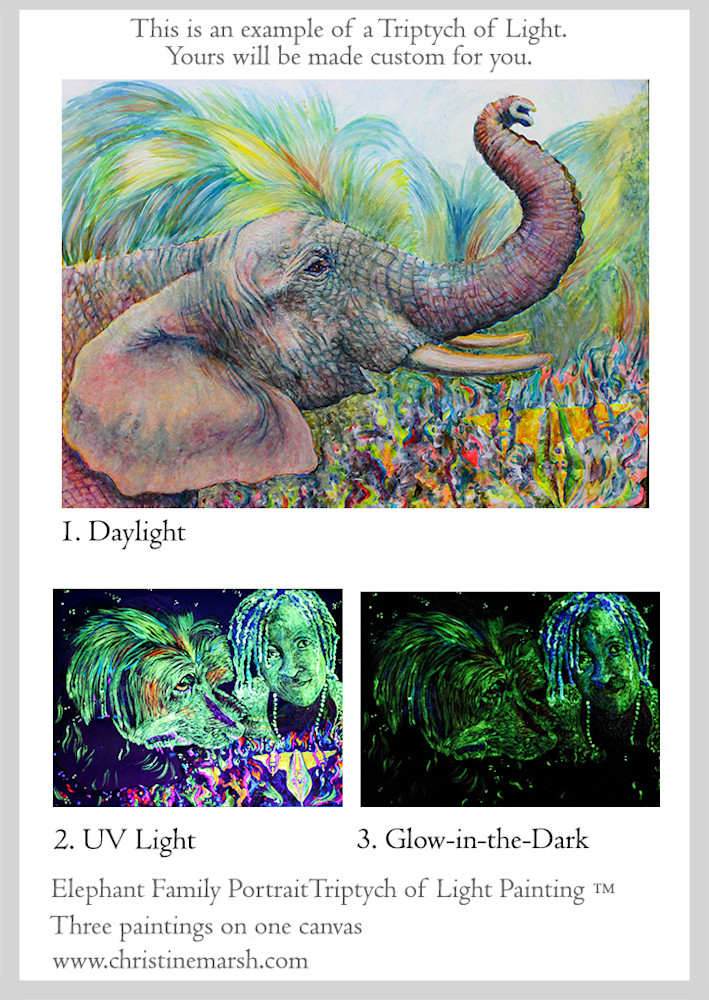 Triptych-of-Light-Painting-TM-Elephant-Family-Portrait-by-Christine-Marsh-w-h2deay
