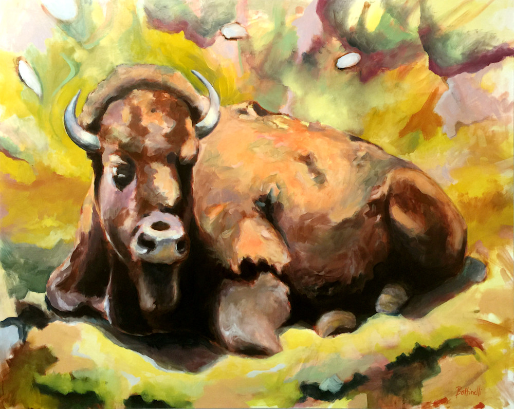 Bison-ph-pogupw
