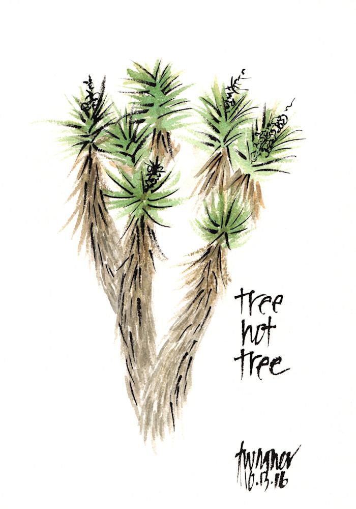 Tree-not-tree---Joshua-Tree-sgzihi