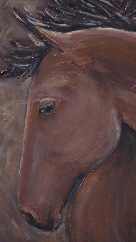 bay-horse-headcu-f3jwt3