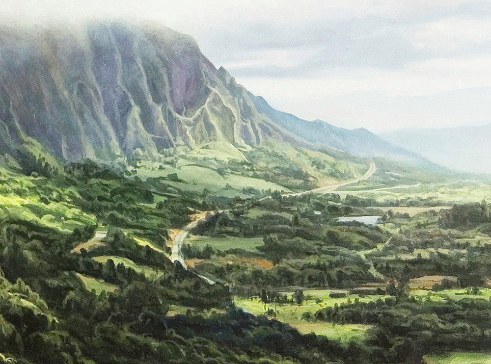 Kevin-Grass-Pali-Overlook-detail-1-Acrylic-on-canvas-painting-aynis2