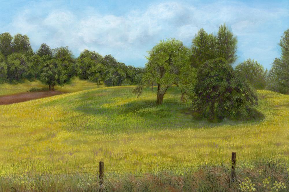 Spring-Mustard-Original-n8p1ym