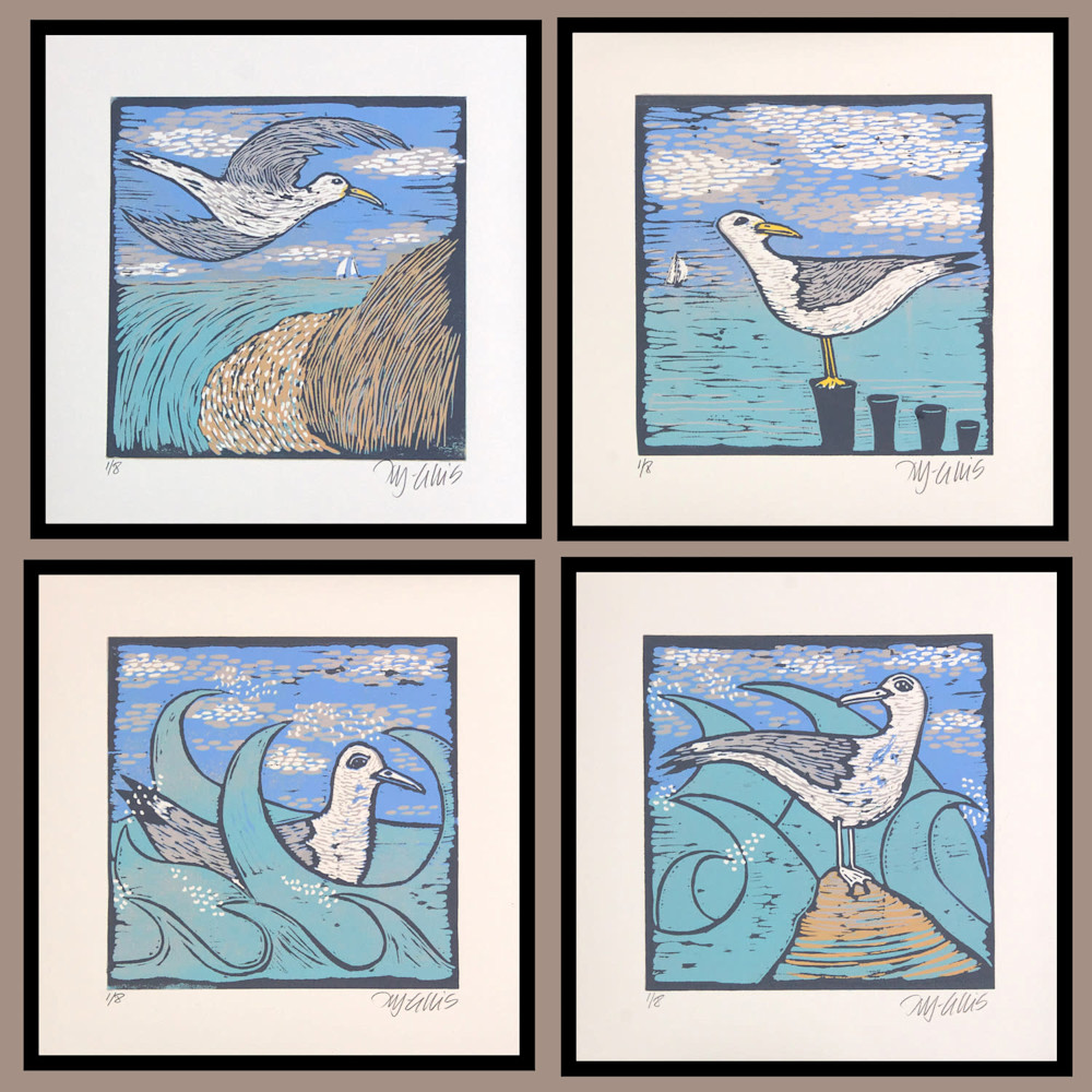 seagulls all 4