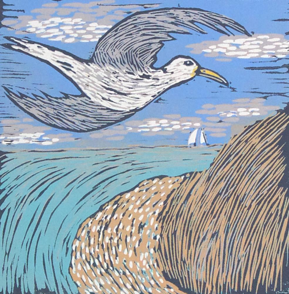 Seagull 1 image