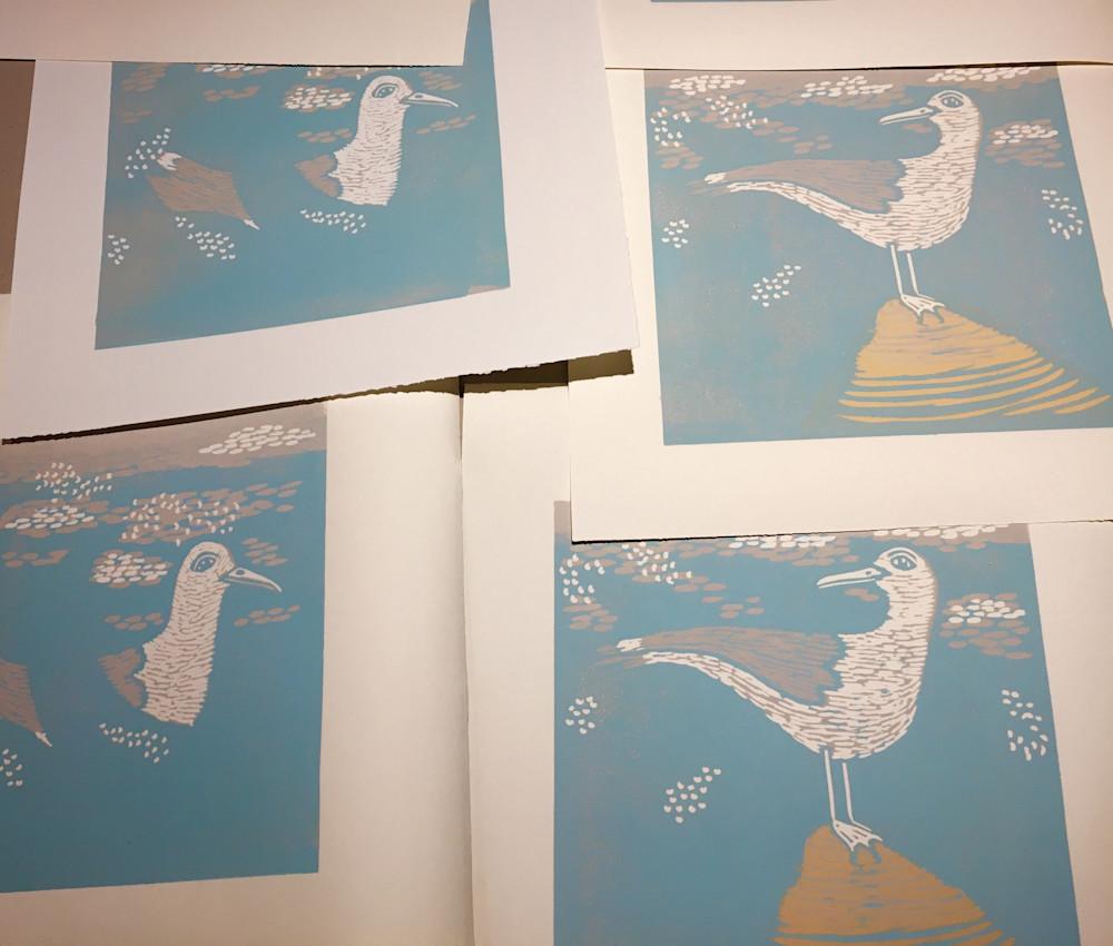 seagulls progress