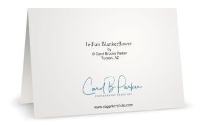 R Indian Blanketflower B