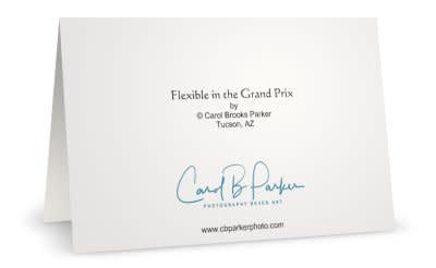 R Flexible Grand Prix B