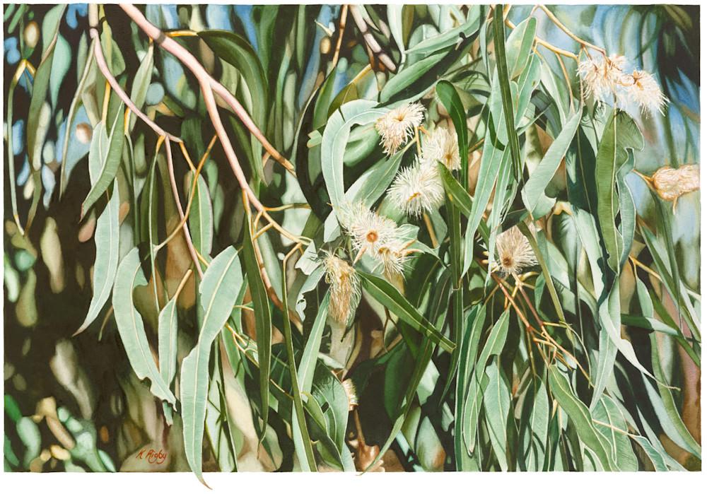 White gum flowers krig 027 white gum flower 60x90cm orig mightylinksfo