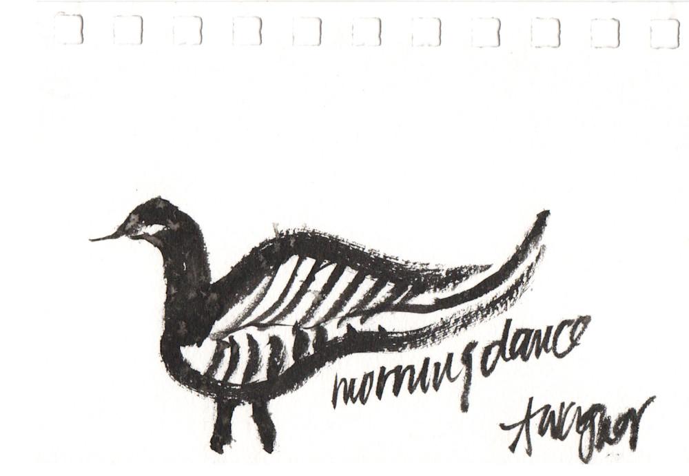 morning dance goose