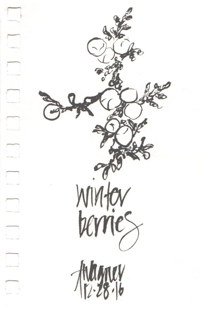 winter berries junipers