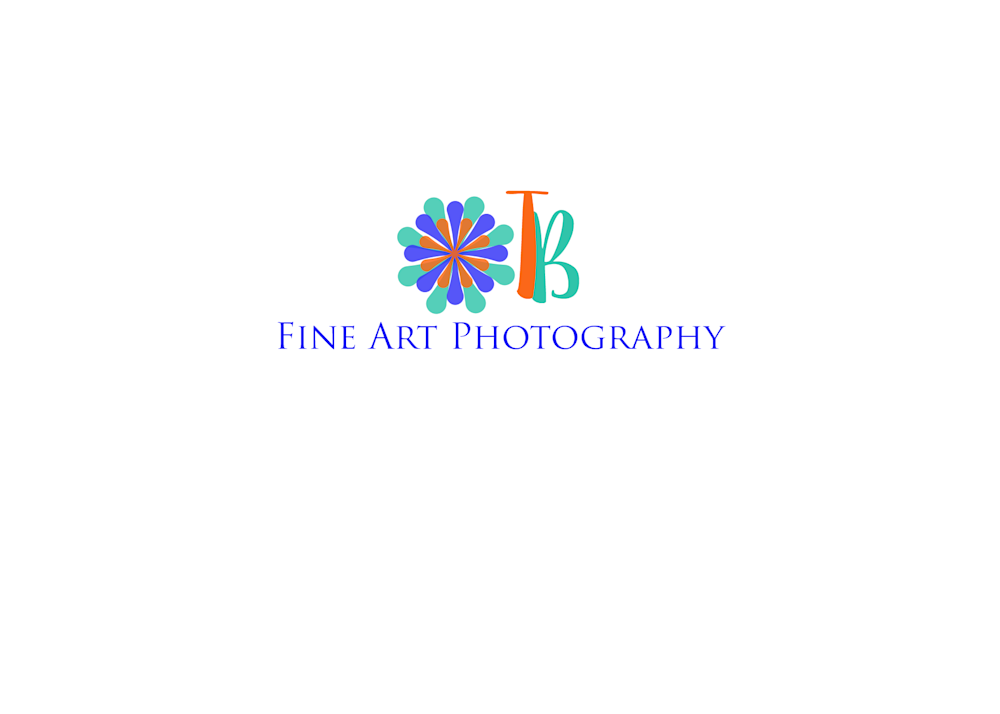 Terri Bahun Fine Art Photography