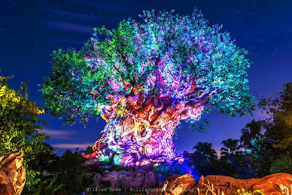 Tree of Life Awakenings sm