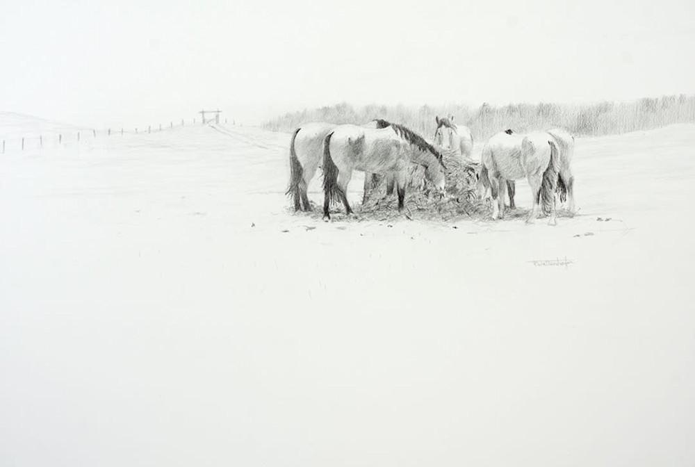 winter flurries 15