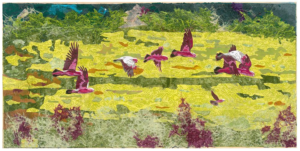 15755 Kristi Abbott Galah birds LIMITED