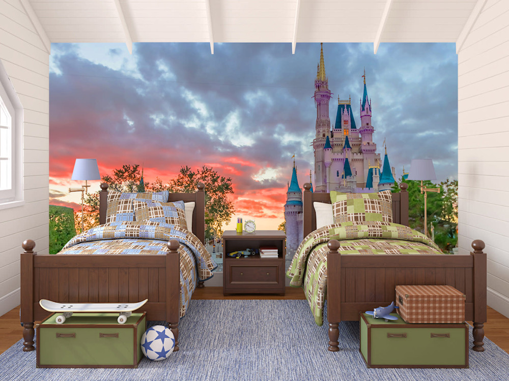Castle Dusk Disney Wall Murals William Drew