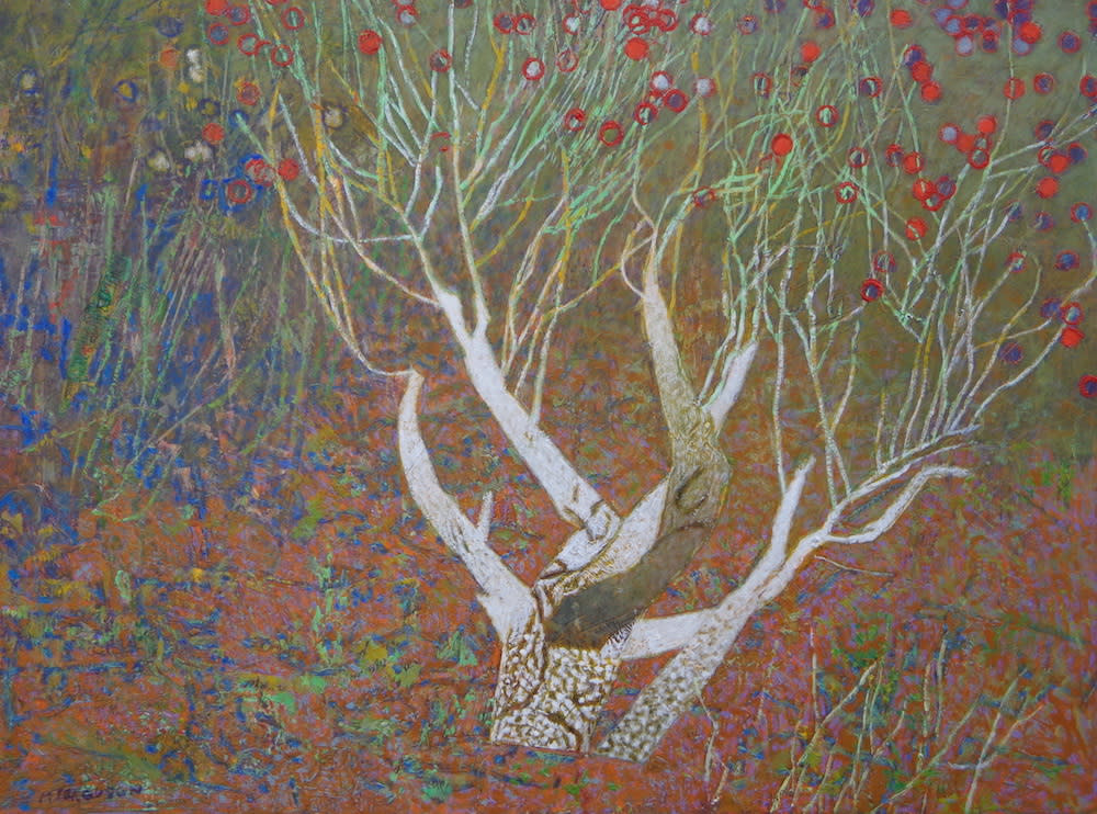Ferguson White tree 1000