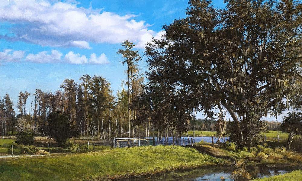 Serene Summer Oak 1000 pixels