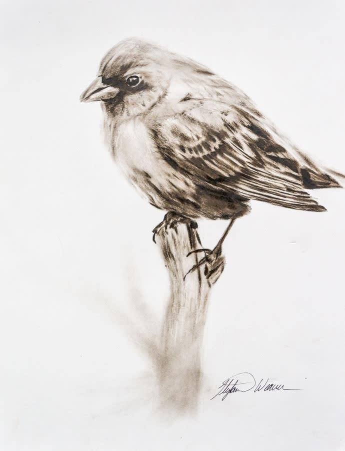 Dry Brush Oil Bird on a Branch Weaver