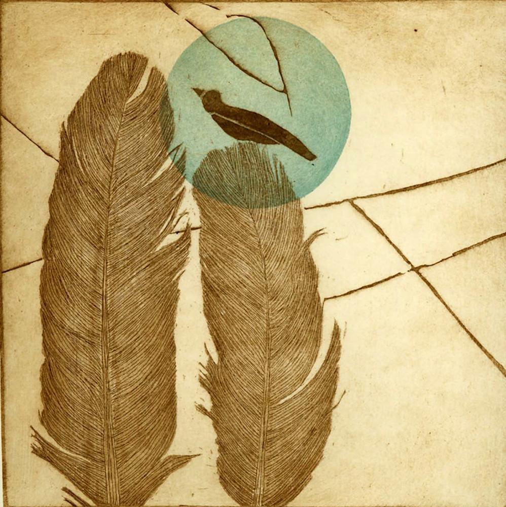 feathers blu dot image