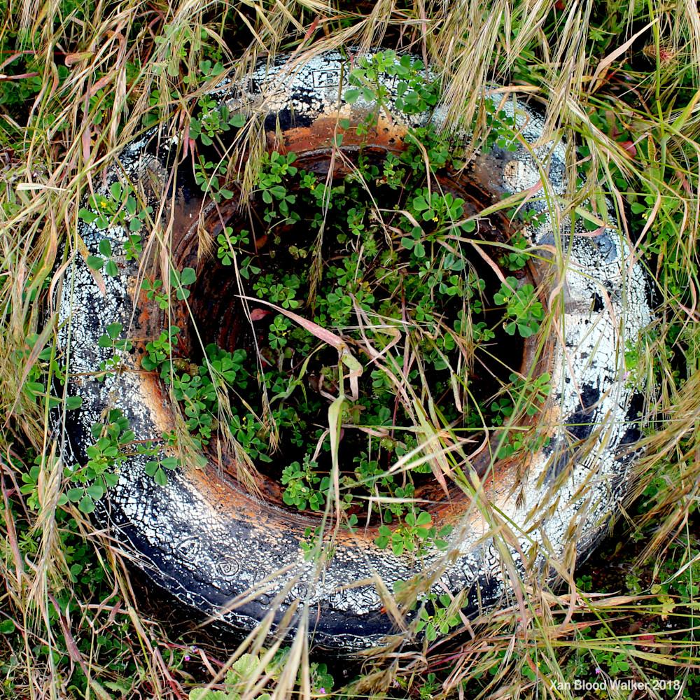 Zen Tire with Clover