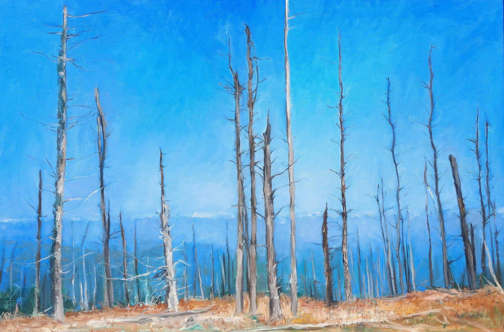 Kevin Grass Atop Mount Mitchell Oil on canvas painting