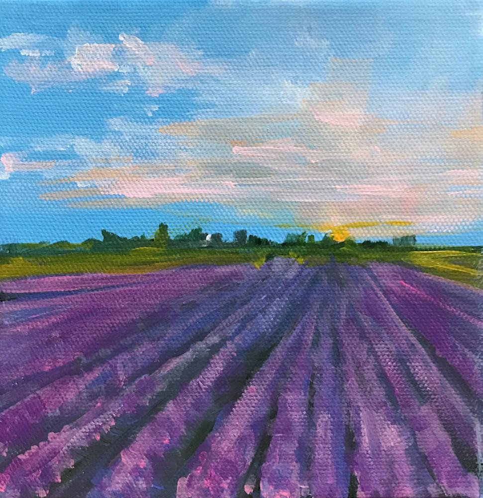 lavenderflieds2