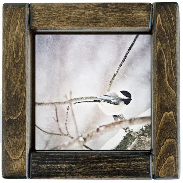 Chickadee Framed