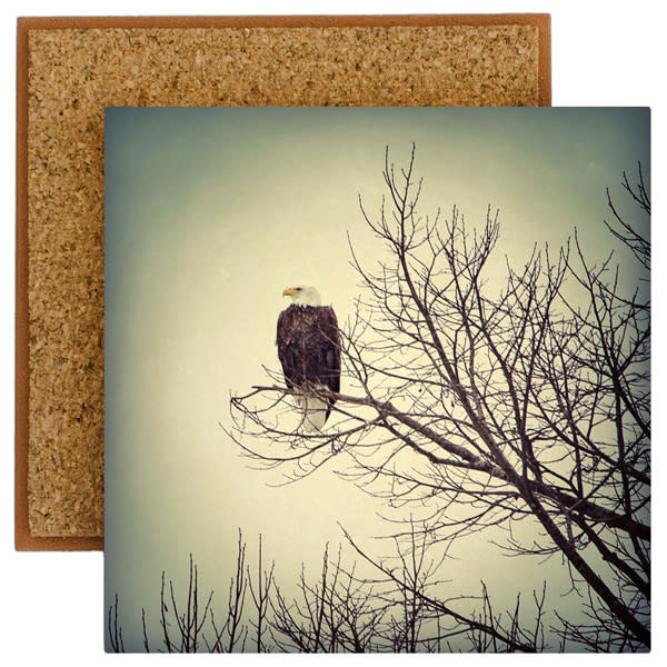Eagle Photo Tile