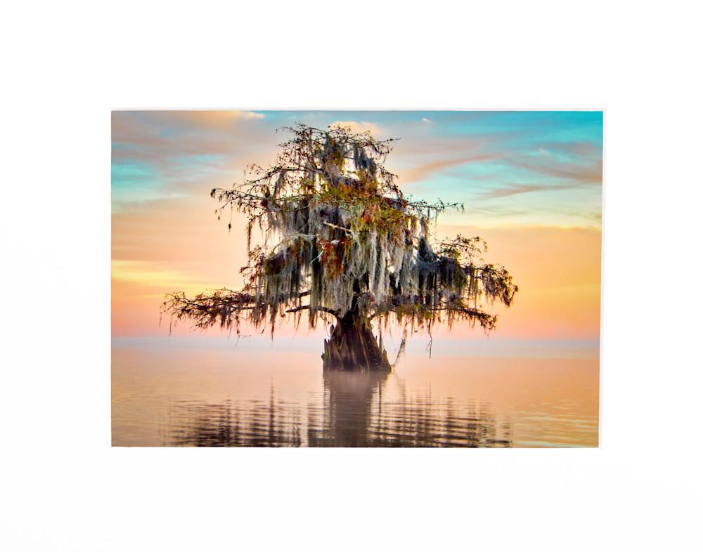 Andy Crawford Photography Lake Maurepas in pastels