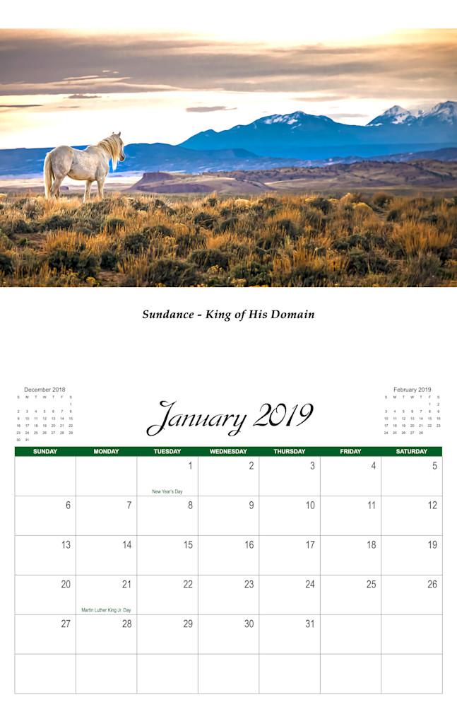 1 Wild Horse 2019 Jan