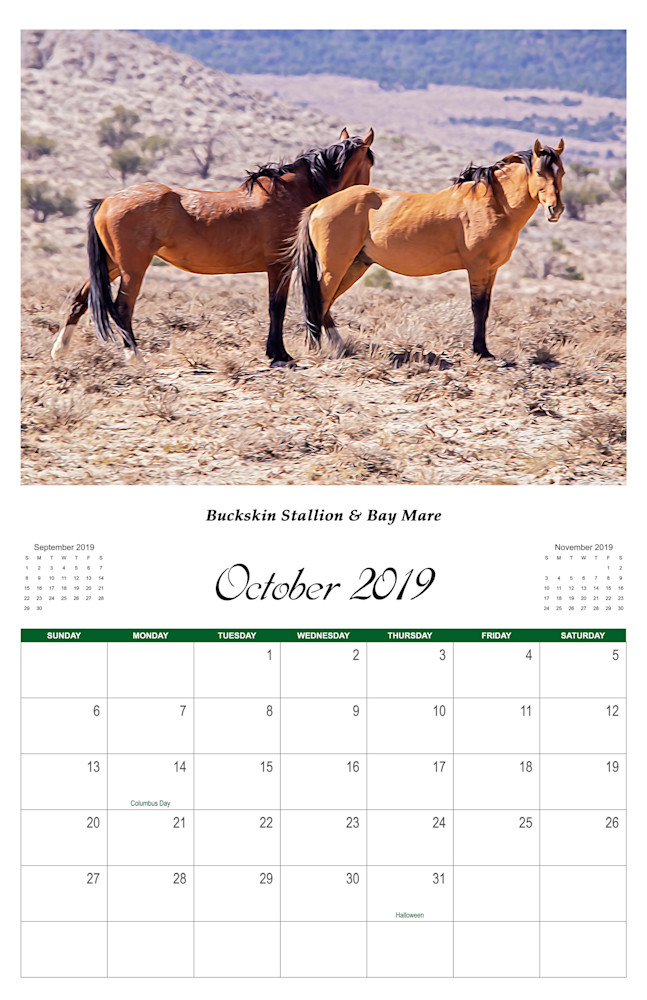 10 Wild Horse 2019 Oct