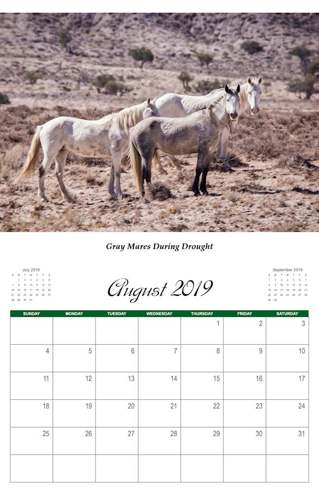 8 Wild Horse 2019 Aug