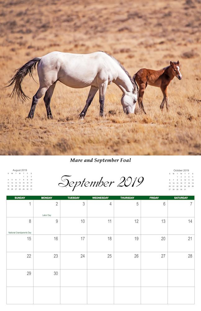 9 Wild Horse 2019 Sept