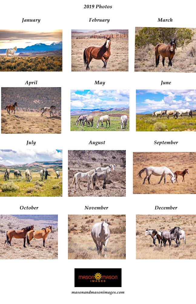 Wild Horse 2019 Back