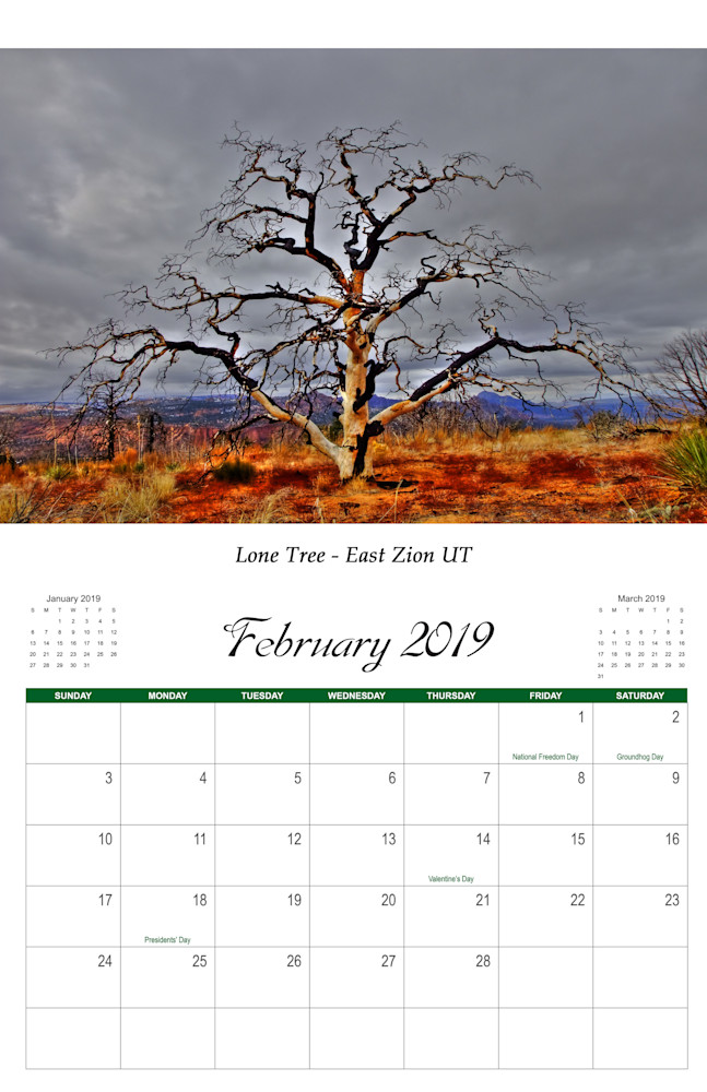 2 Landscape 2019 Feb