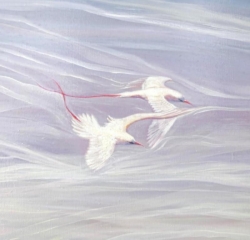 white birds blue sea d2 S