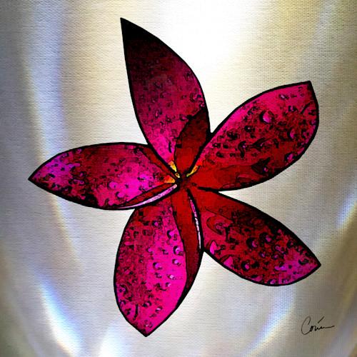 Corinabakke plumeria pink yalxkc