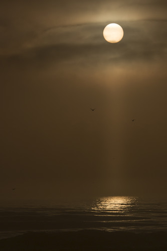 Mike_jensen_photography_new_smyrna_beach_180208_5240_fgi2nf