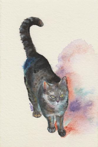 4_ringtail_tabby_cat_strolling_1_4x6_-02_ne5hqp