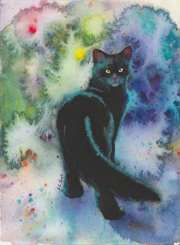 12 black cat strolling 5 5x7 n9ryeg