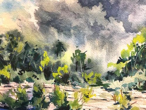 Rain_at_kelleys_island_quarry_jmmason_siglge_yezdnd