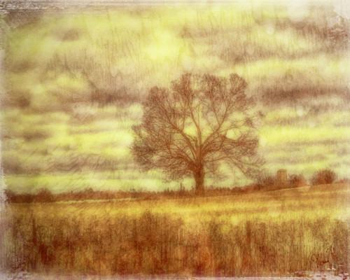 Geoscape autumn haze  a9pgtz