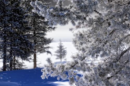 Snowscape01 r3jdcn